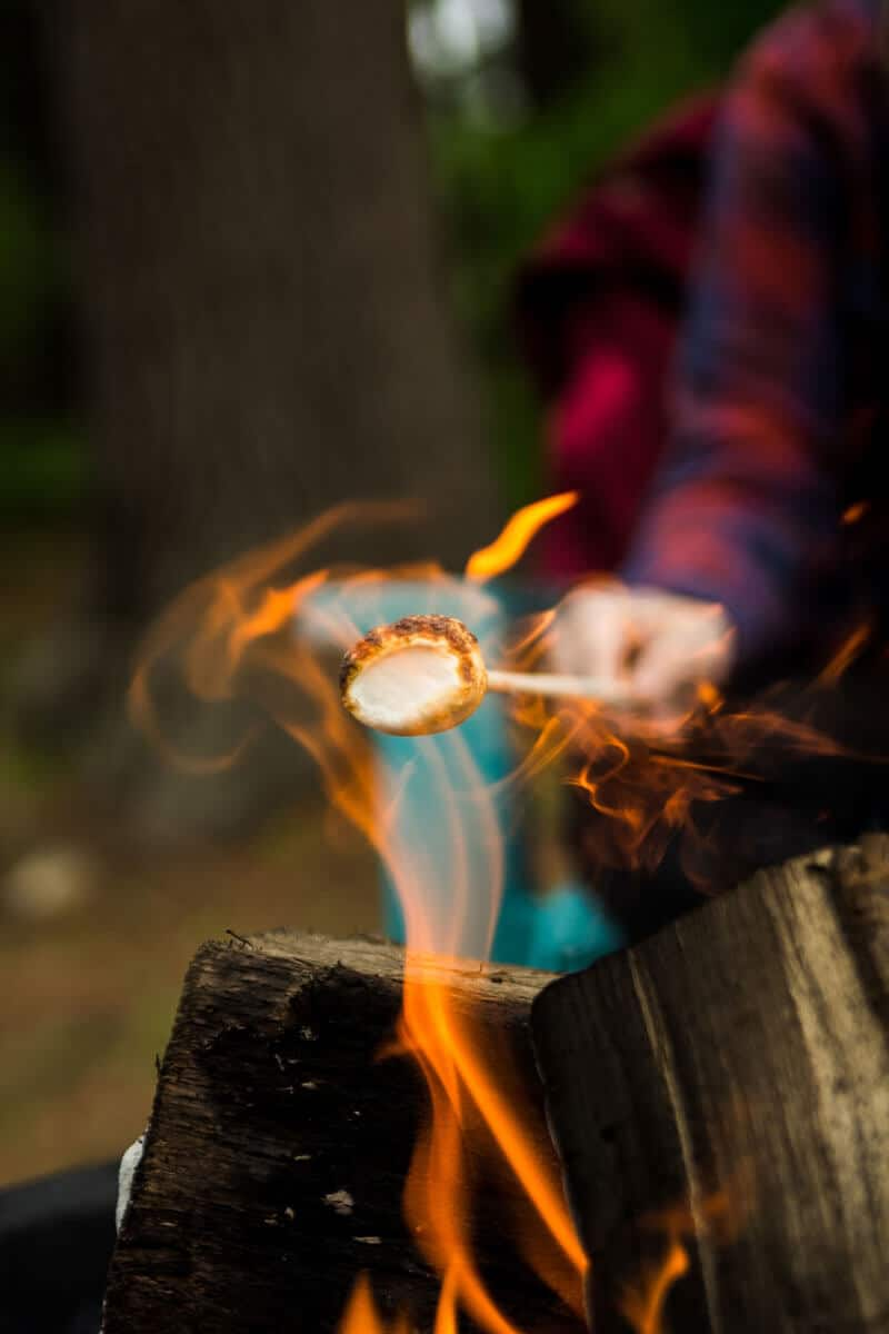 Roasting Marshmallows over flame at Wilderness Presidential Resort