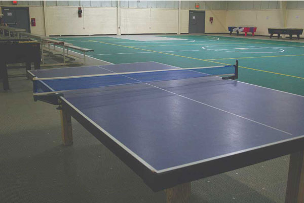 Table Tennis Table in Gymnasium at Wilderness Presidential Resort